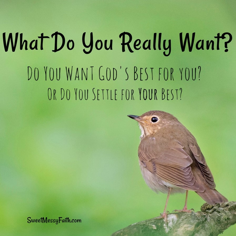Is what you're getting what you really want? Do you want God's best for you, or do you settle for your best?